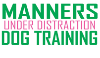Manners Under Distraction Dog Training